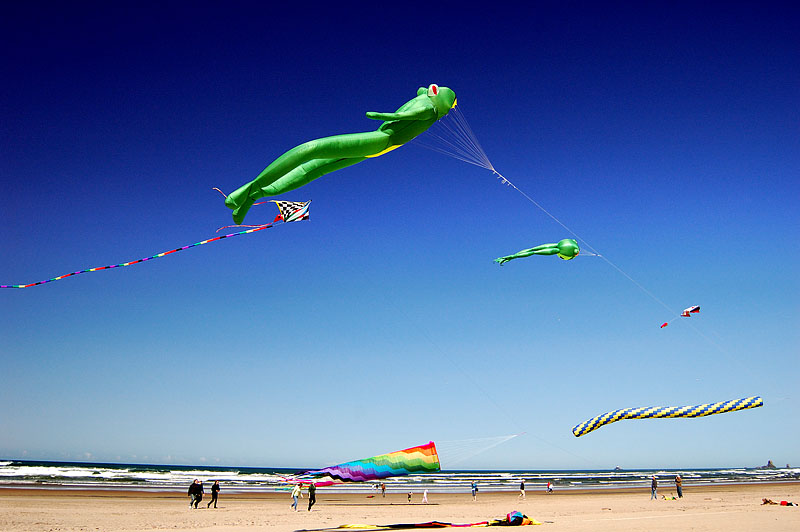 Kites Oregon Coast
